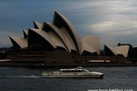 观看悉尼歌剧院