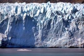 游览美国冰河湾国家公园