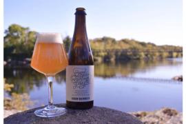 为世界上15个最好的啤酒城市干杯