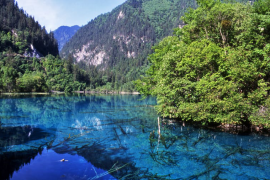 50个令人惊叹的大自然景观,你打卡过几个?