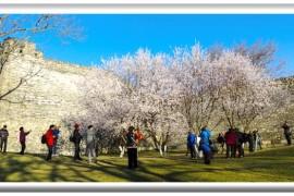 3月去北京旅游